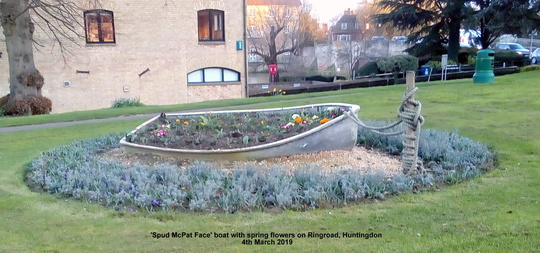 Spud McPat Face boat with spring flowers on Ringroad Huntingdon 4th March 2019