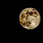 Gardener's Moon