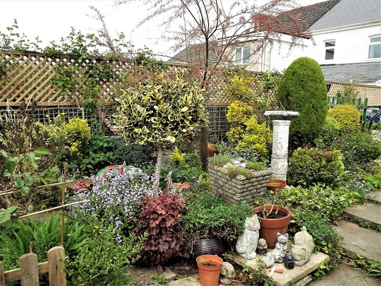 Part of garden in need of revamp