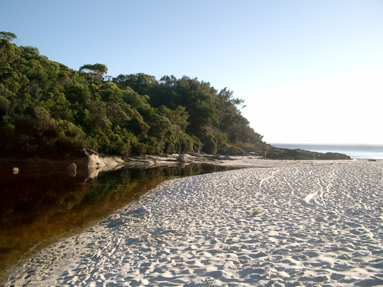 The creek as it meets the sea