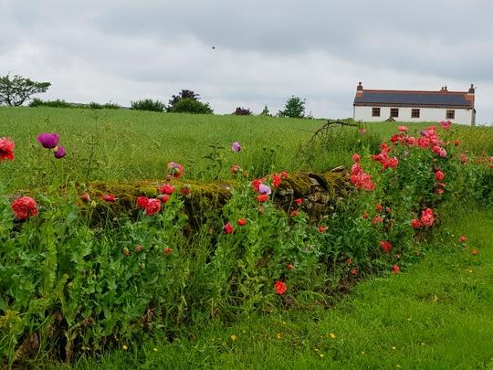 Lincolnshire village