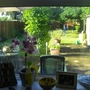 View from our kitchen window