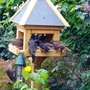 The birds are enjoying the new bird table.