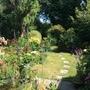 Summer garden 1