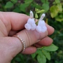 Close up of a white salvia flower, gifted by Brian.