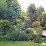 View across front garden.