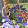 2008_0810aug1_aug100014