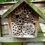 For Andrew  ...   Bee hotel