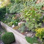 Rockery pic from August, which disappeared previously..