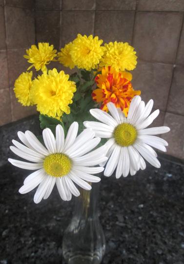 Impromtu Floral Display