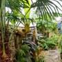The jungle....