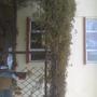 garden_034.jpg