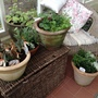 More containers and if I add many more I won't have anywhere to sit!