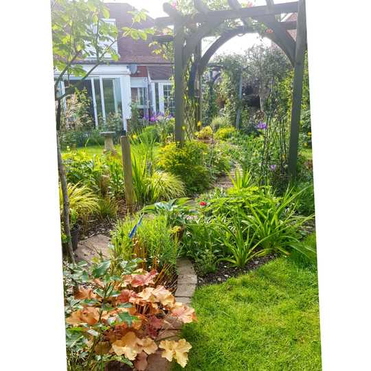 looking down the garden path...