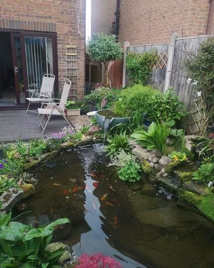 How tiny my garden is..