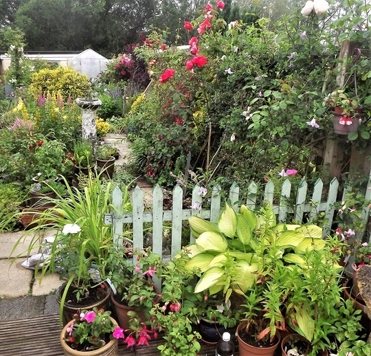 Patio corner and garden view