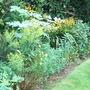 Yellow border - August 2008