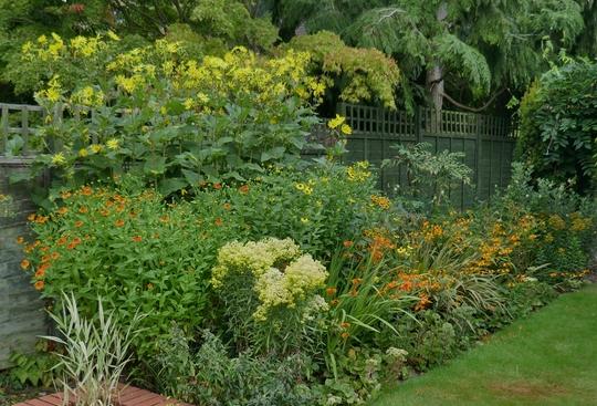 Main border in the back garden