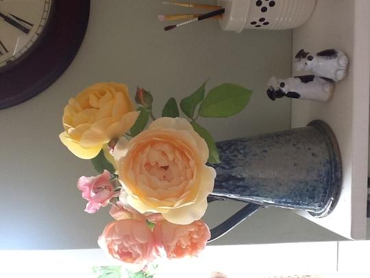 Lovely Austin roses