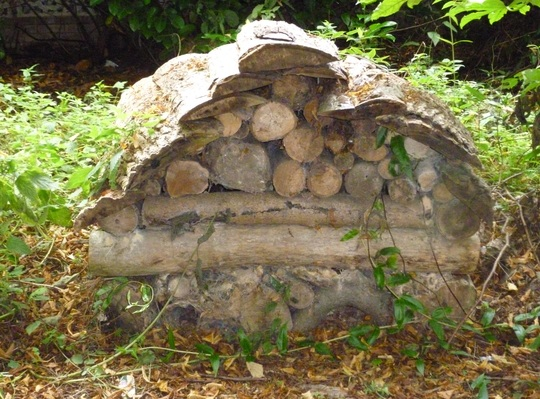 Log pile in a stumpery
