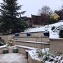 Snowy garden.