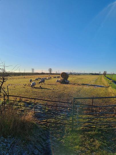 Winter sun in Winteringham.
