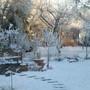 Snow_january_2013_005