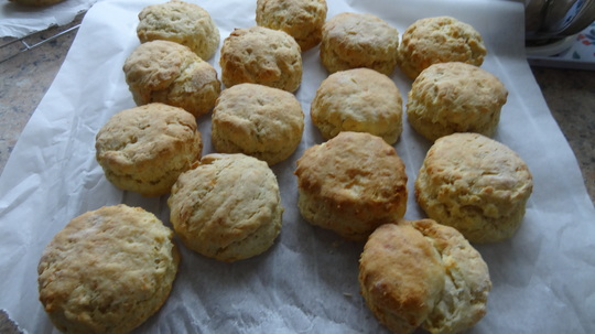 Cheese and herb scones just cooked.