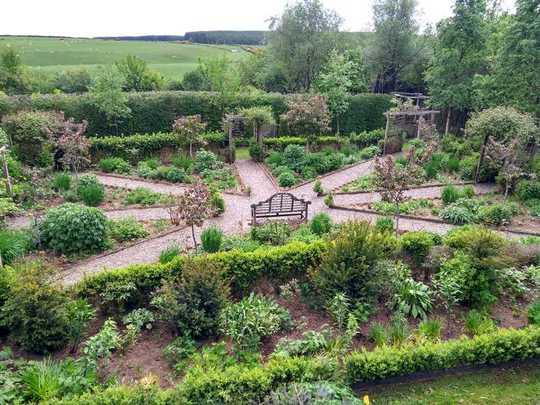 Squinty garden