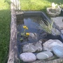 Mini Wildlife Pond