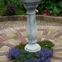Veronica prostrata  planted at base of bird bath