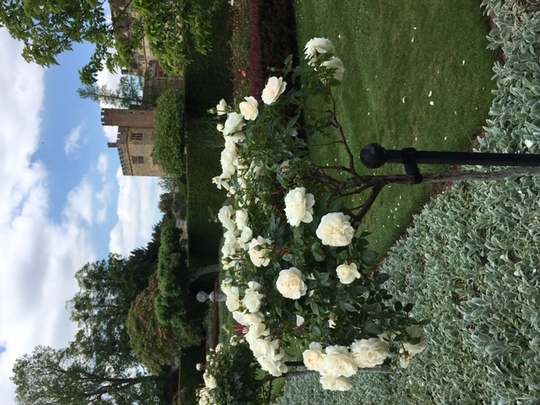 Penshurst House and Gardens in Surrey