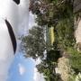 Flying slug!