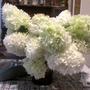 Snowball Floral Display