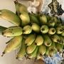 Golden Finger Bananas