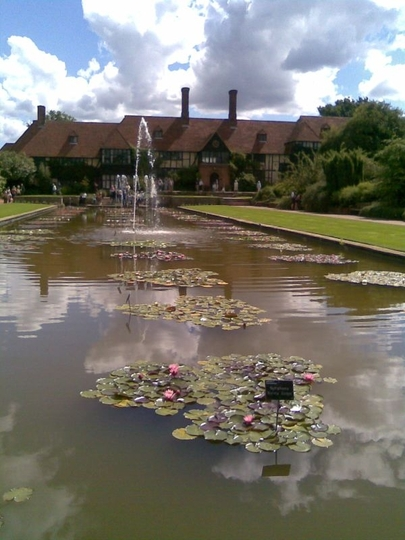 RHS_Wisley_Lilipad_collection.jpg