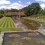 RHS_Wisley_Lilipad_collection_2.jpg