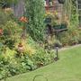 my back garden again!