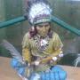 Indian (Spirit guide)