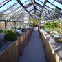 Alpine house at Harlow carr