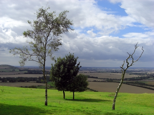 View from the grounds of Whipsnade Zoo