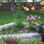 New Garden at end of season