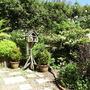 Garden_june_2006_007
