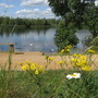 Bedfont Lakes Nature Reserve and Country Park