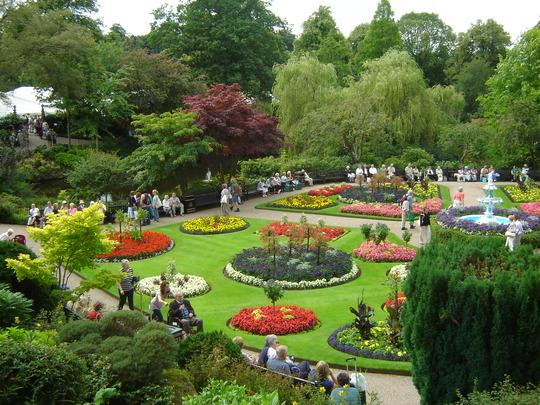 Shrewsbury Flower Show August 2008