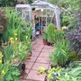 Greenhouse Area of our garden