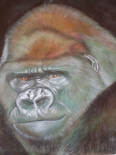 the gorilla finished at last