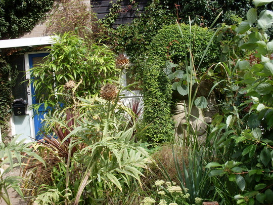my overgrown garden i love it