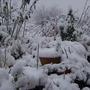 SNOW................. 2007