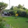 Front Garden (ceanothus Italian Skies)